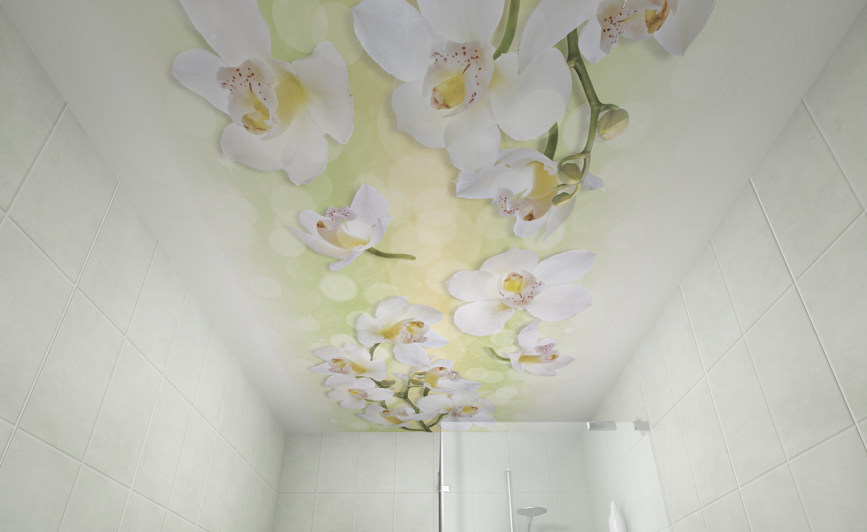 той пласт панели с фотопечатью на потолок изображение веб-камеры